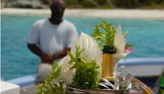 The Grenadines Collection