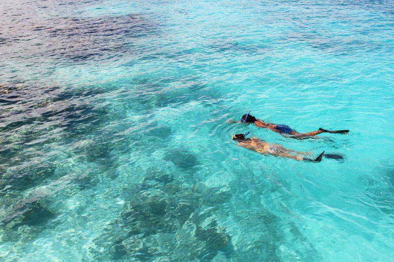 Adventure Antigua: Snorkeling