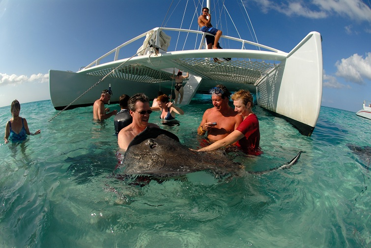 Cayman Islands: Stingray City
