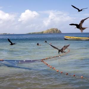 Dominica: Fishermen