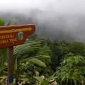 Dominica: Waitukubuli National Trail