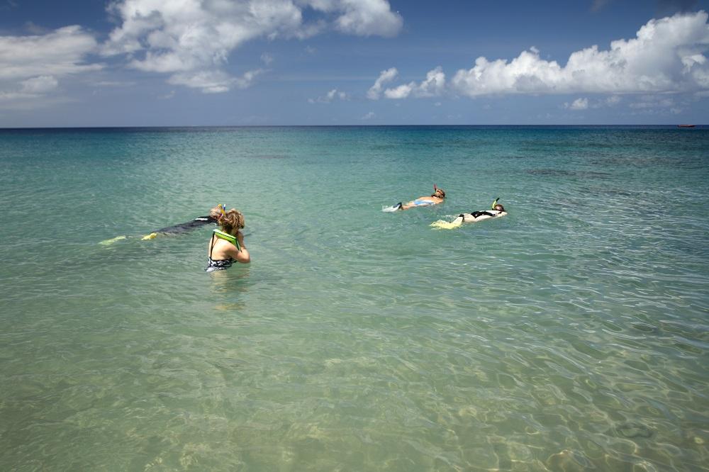 Montserrat: Snorkelling