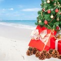Caribbean Beach: Christmas Tree
