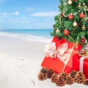 Caribbean Beach: Christmas Tree