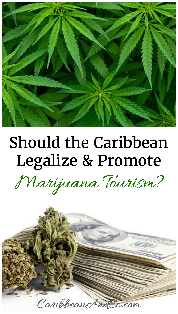 The recent success of marijuana tourism in places like Denver, Colorado has some wondering more loudly whether Caribbean islands should follow suit.