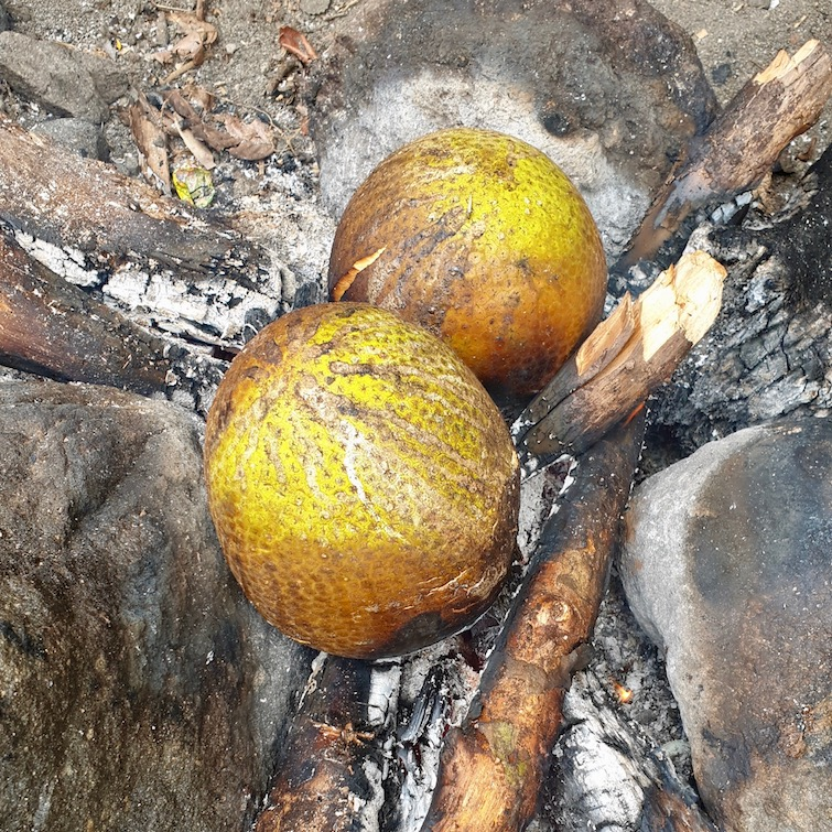Breadfruit being roasted over fire in St Vincent.