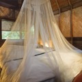 Hotel Room with Mosquito Netting