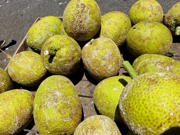 Ripe breadfruits on sale at market in St Vincent.