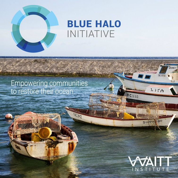 Waitt Institute: Blue Halo Initiative