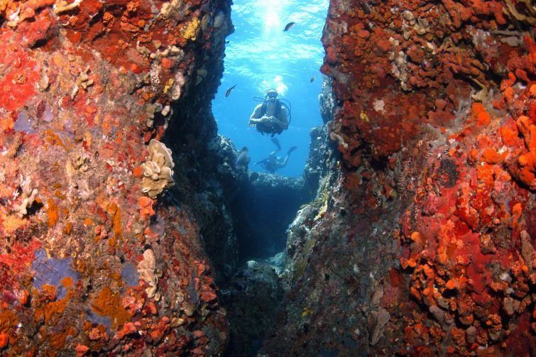 British Virgin Island: RMS Rhone Marine Park