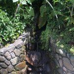 Montserrat: Runaway Ghaut drinking water. Photo Credit: © Ursula Petula Barzey.