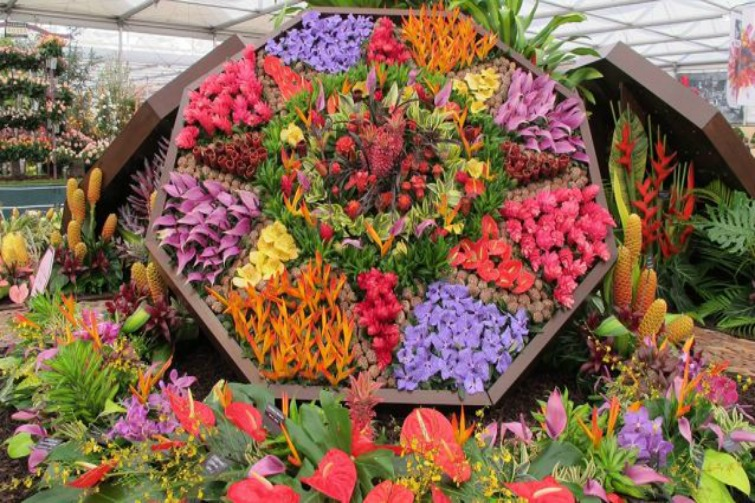 RHS Chelsea Flower Show -  Barbados Horticultural Society