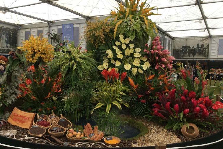 RHS Chelsea Flower Show -  Grenada Pure Rainforest