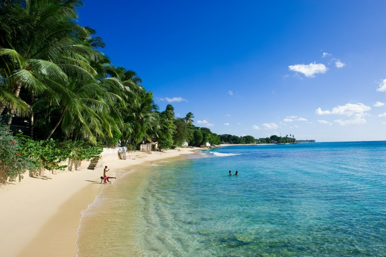 Considering purchasing real estate/luxury home in the Caribbean? Check out our list of 12 reasons why Barbados should be on the shortlist. | Barbados - Coconut treelined beach.