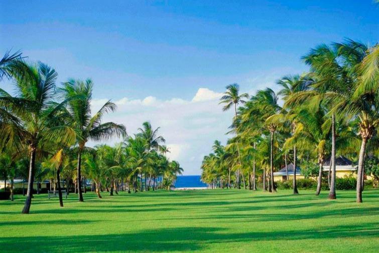 Nevis - Nisbet Plantation