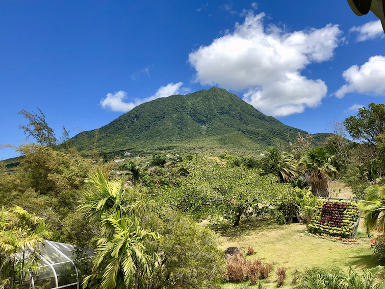 Mount Nevis from the Botanical Garden of Nevis.