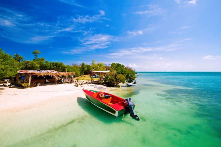 Grenada: hog island