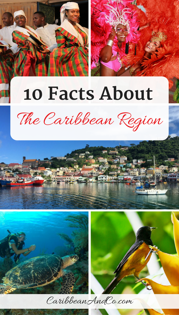 Check out our list of 10 facts about the Caribbean region, covering a range of topics including its name, geography, population, politics, ethnic makeup, language, culture, biodiversity, tourism, etc.