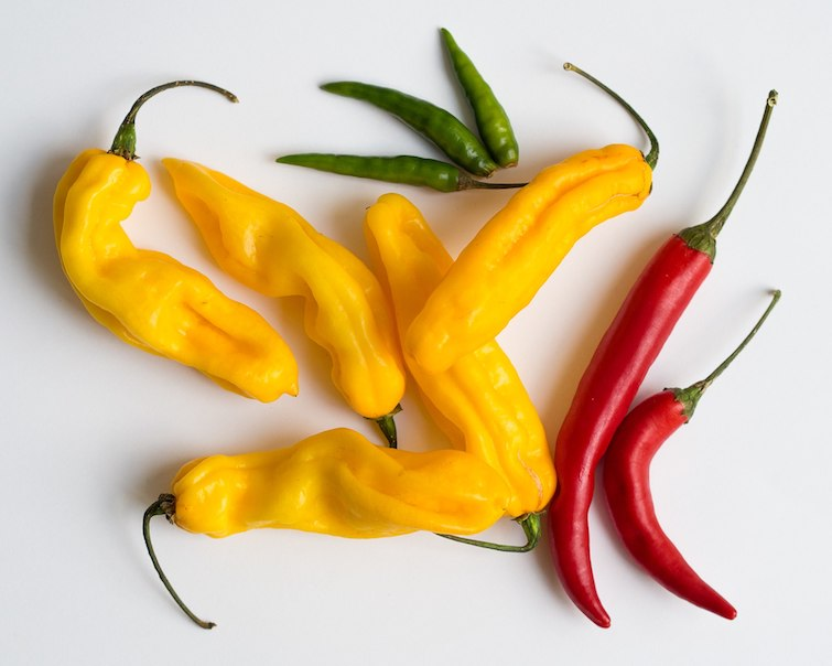Different types of chili peppers: Green bird's eye, yellow madame Jeanette, and red cayenne peppers. Photo Credit: © Takeaway via Wikimedia Commons.