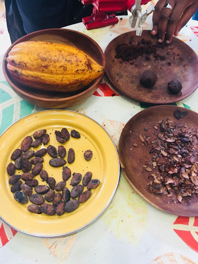 House of Chocolate Grenada: Cocoa beans in various stages.