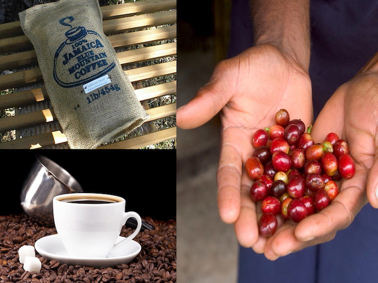 Jamaica Blue Mountain Coffee. Photo Credit: © Jamaica Tourism Board.