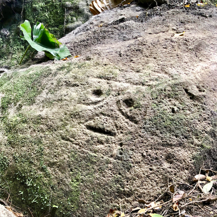 Hiking Montserrat: Montserrat Petroglyphs in Soldiers Ghaut.