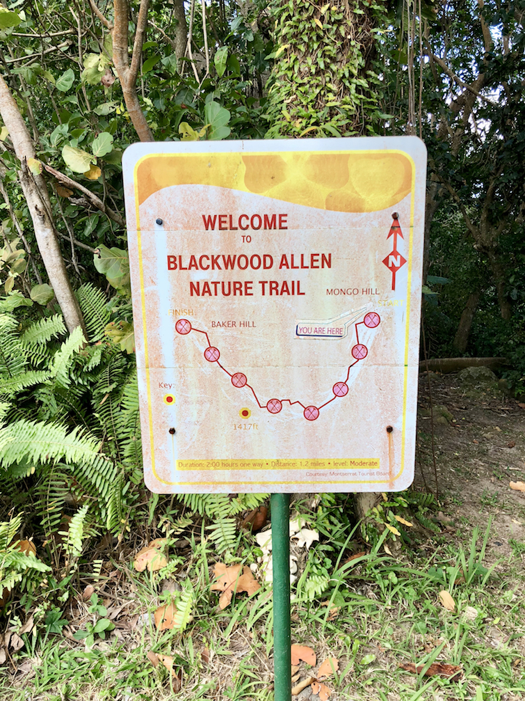Hiking Montserrat: Sign for Blackwood Allen Nature Trail.