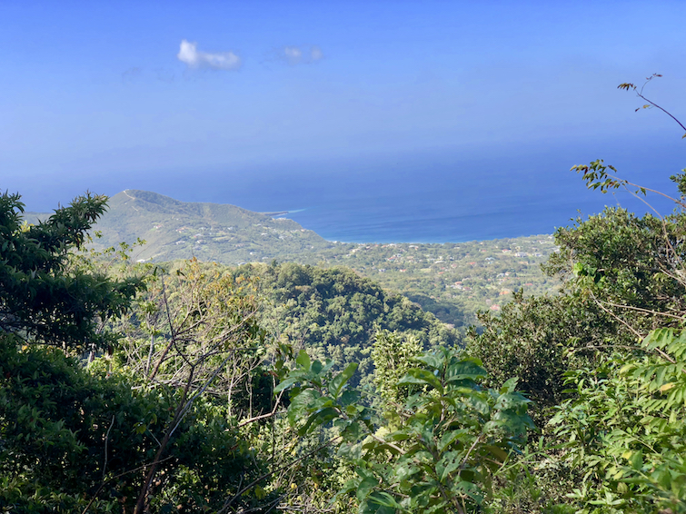 Hiking Montserrat: View from Lawyers Mountain_Isle's Bay and Garibaldi Hill in the South.