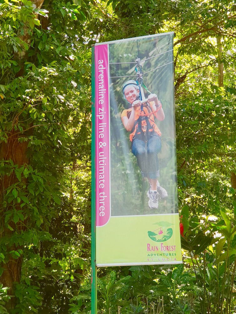 Things To Do In St Lucia: Zipline Saint lucia Rainforest.