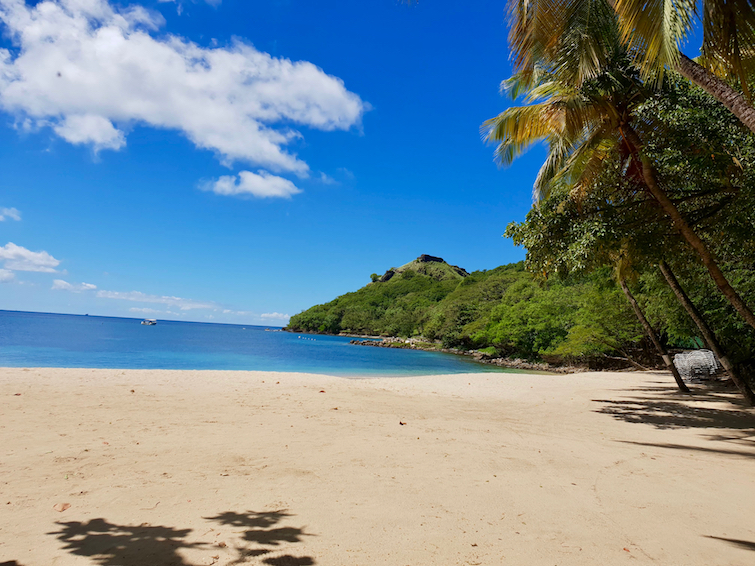 Beach at Pigeon Island National Landmark in St Lucia.