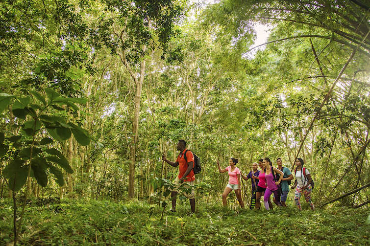 Group hiking in Coco Hill Forest in Barbados. Photo Credit: © Barbados Tourism Marketing Inc.