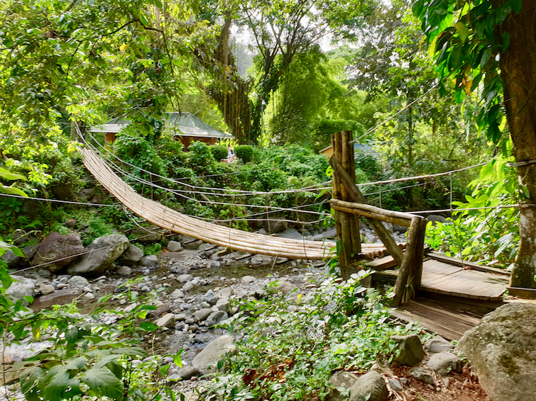 Bamboo Bridge at Dark View Falls in St Vincent.