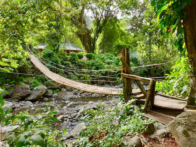Bamboo Bridge at Dark View Falls in St Vincent.