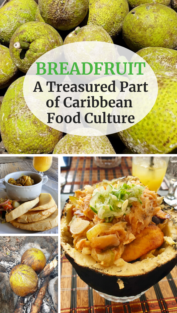 Discover why breadfruit is a treasured and beloved part of Caribbean food culture and definitely should be tried by those who travel to the region.