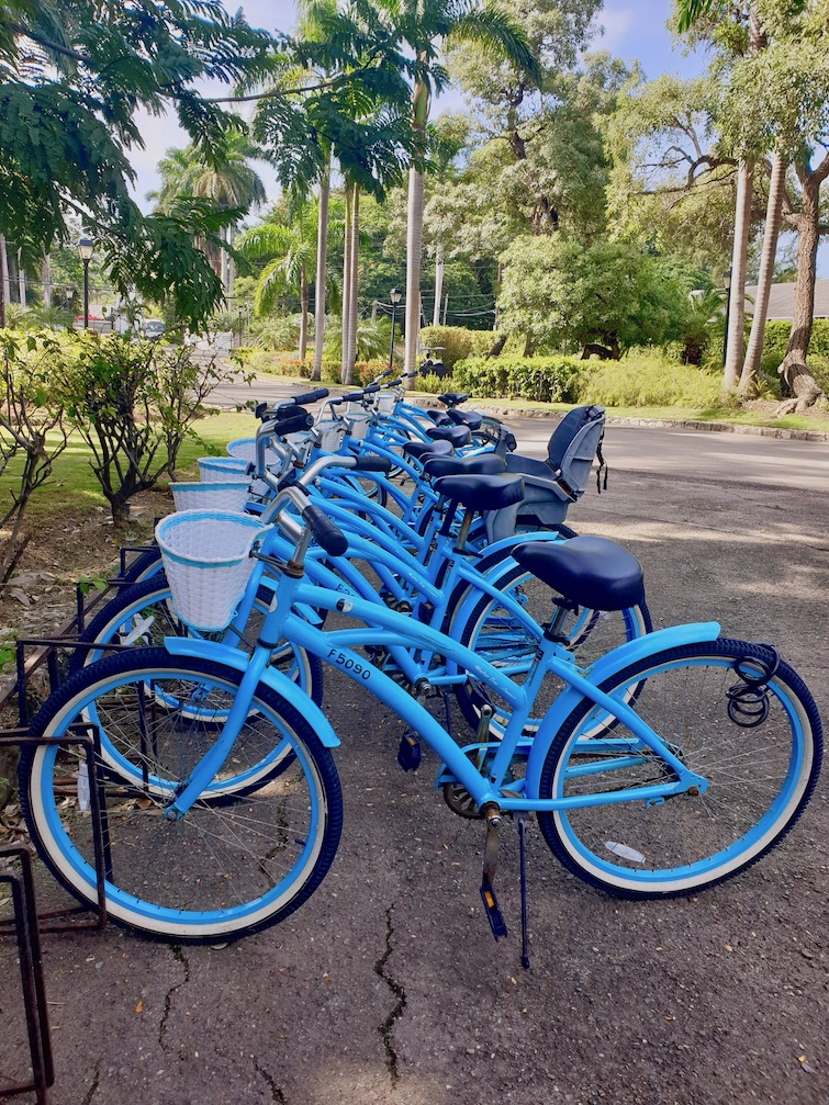 Blue bikes at Half Moon resort in Jamaica.