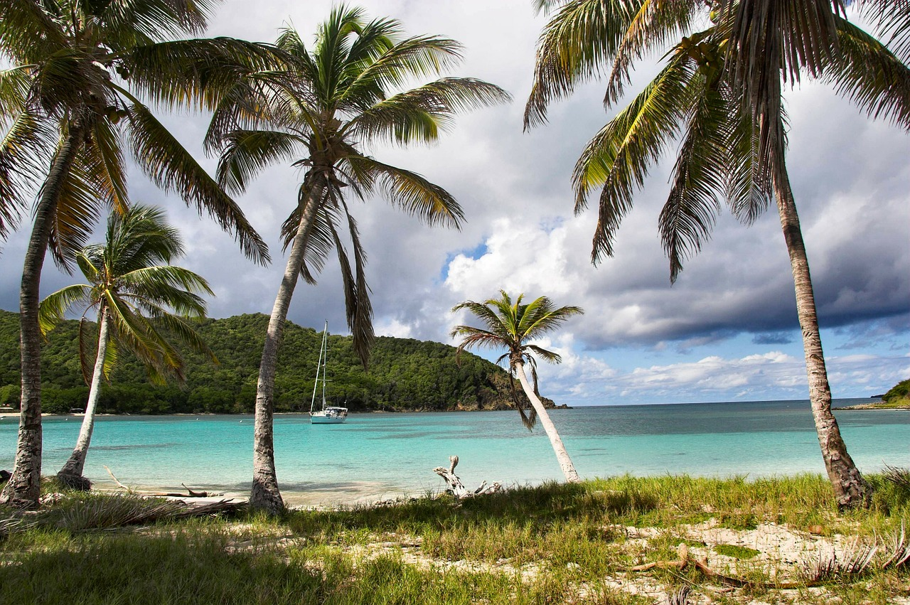 caribbean, island, tropics